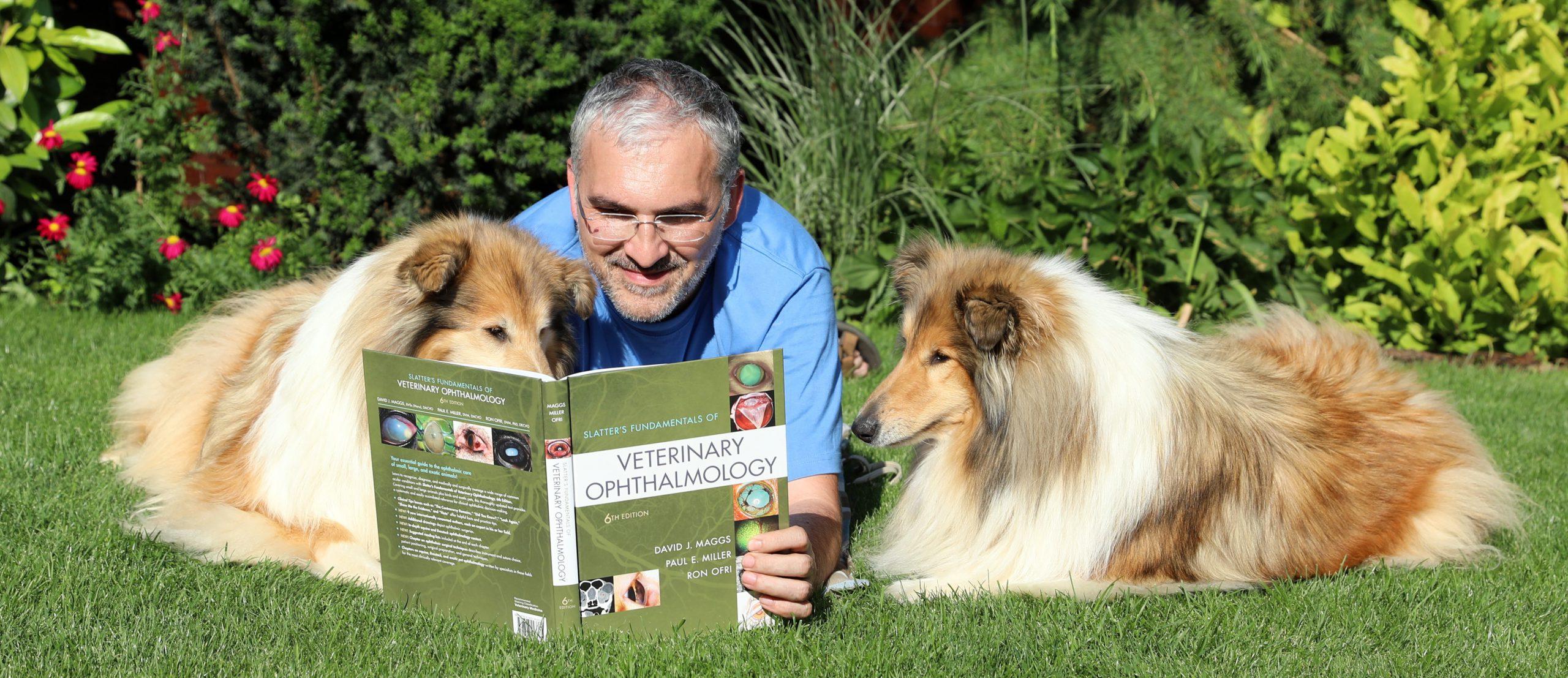 MVDr. Pavol Zubrický, Veterinárny oftalmológ, očný špecialista, vyšetrenie očí, pes, mačka