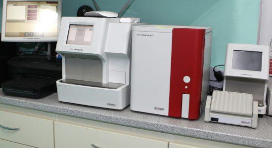 veterinárna hematologia a biochemia